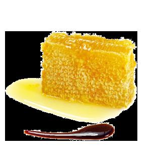 Miel et vinaigre balsamique de Modène