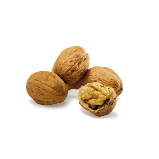Walnuts from Perigord, France